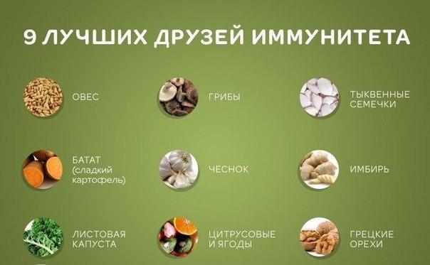 Что повышает иммунитет человека продукты